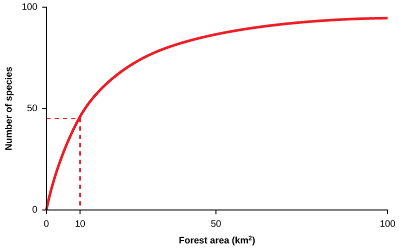 A line graph with number of species on the Y axis, and forest area in kilometers squared on the X axis. The line starts at 0,0, and curves up quickly at first, then more gradually as the values on the X and Y axis increase until the line reaches 100 on the X axis and just below 100 on the Y axis. A vertical dotted line extending up from the value of 10 on the X axis meets the line at just below 50 on the Y axis.