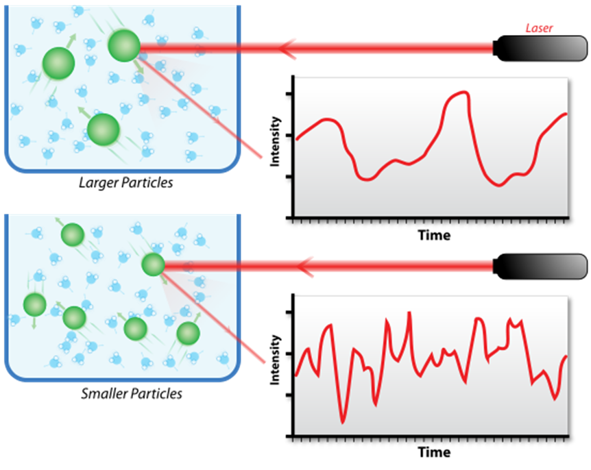 Hypothetical fluctuation of scattering intensity of larger particles and smaller particles.