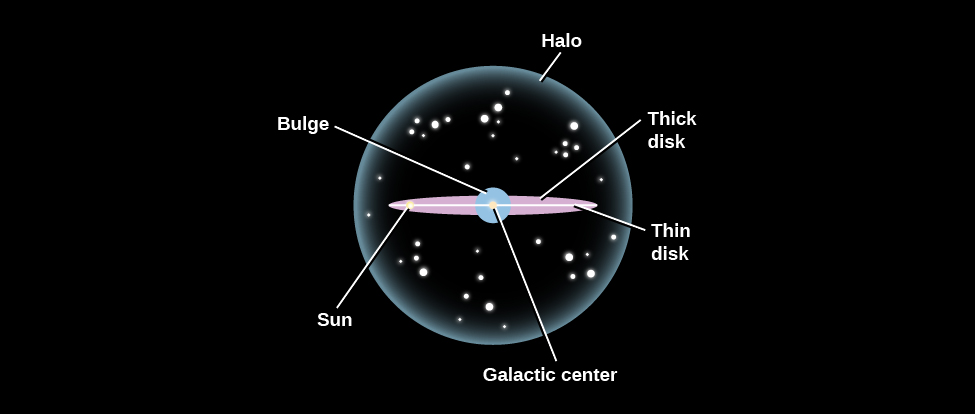 "Schematic of the Milky Way. Our galaxy is seen edge-on in this illustration, with the major components labeled. At the center of the diagram is the ""Galactic center"" indicated with a white dot located in the middle of a white horizontal line labeled ""Thin disk"". The Sun is about 2/3 of the way from the center to the left edge of the thin disk and indicated with a white dot. The ""Thick disk"" is shown in pink above and below the thin disk. The ""Bulge"" surrounds the galactic center and the ""Halo"", drawn as a semi-transparent sphere, surrounds nearly the entire galaxy."