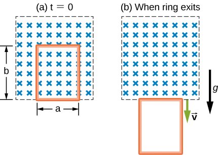 "Figure a shows a box with crosses in it. It is labeled t=0. An area within it is demarcated with breadth equal to a and length equal to b. Figure b shows the same box with crosses in it. It is labeled, ""when ring exits"". The demarcated are from figure a is now below the box. There are two downward arrows labeled g and v."