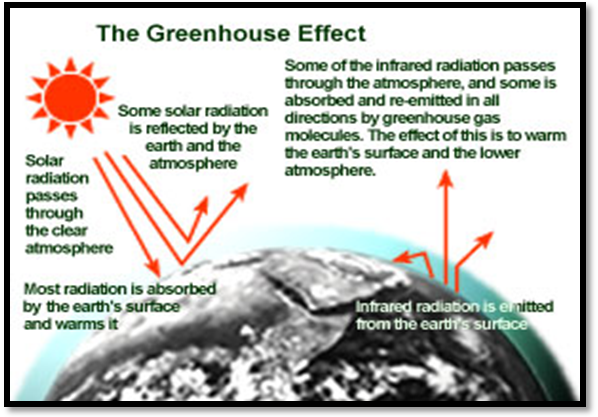 how to solve greenhouse effect