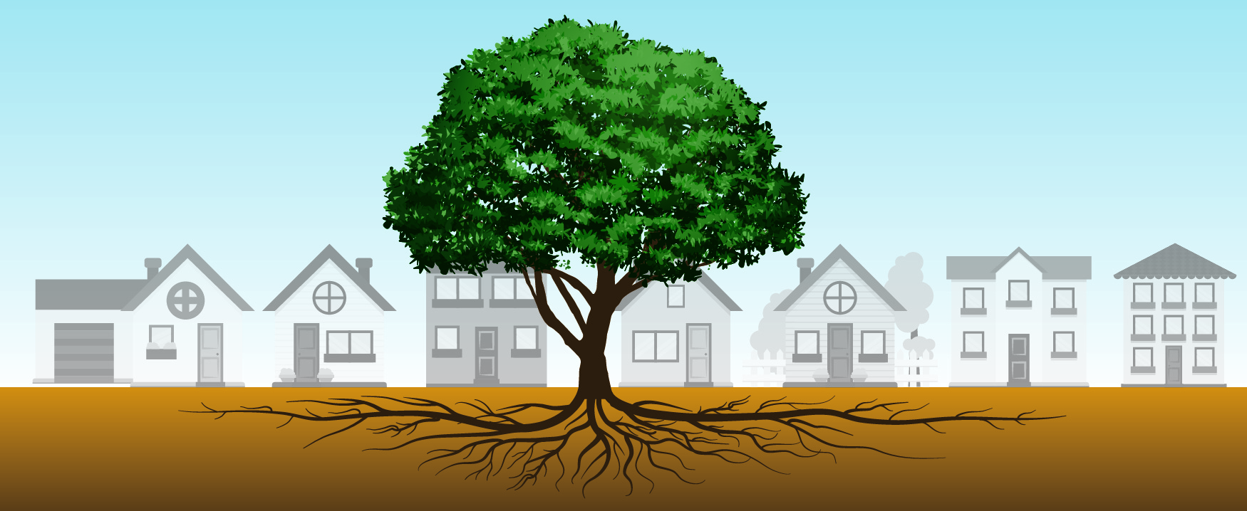 A tree grows centered in front of a row of houses. The tree's roots spread out underground, extending the width of the row of houses in both directions.