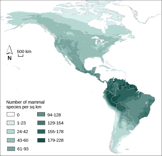 Map shows the special distribution of mammal species richness in North and South America. The highest number of mammal species, 179-228 per square kilometer, occurs in the Amazon region of South America. Species richness is generally highest in tropical latitudes, and then decreases to the north and south, with zero species in the Arctic regions.