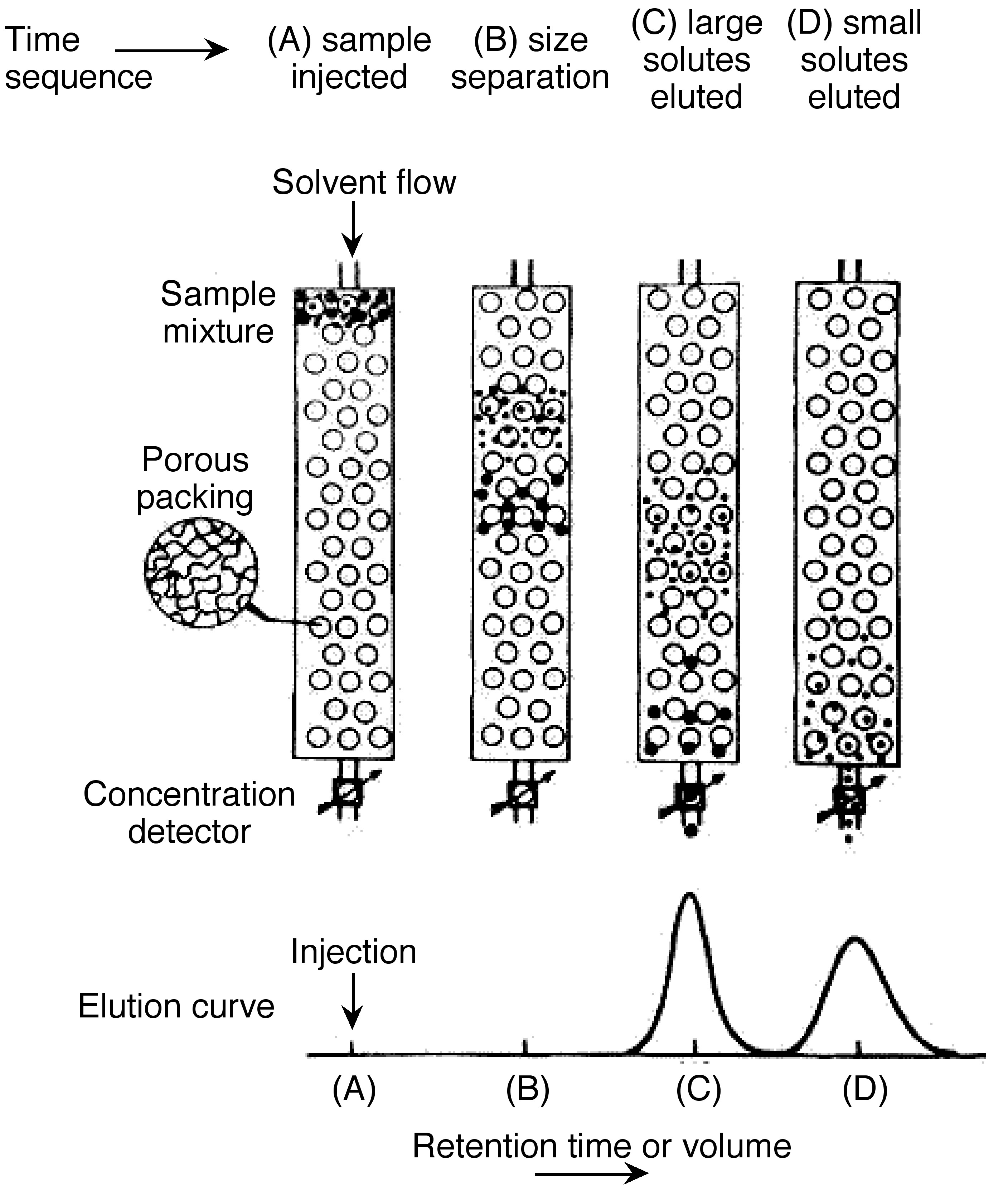 size exclusion chromatography Learn more about size exclusion chromatography at separationseutosohbiosciencecom.
