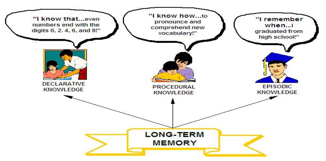 long term memory and critical thinking skills How to exercise your brain for better thinking skills  skills sharp and memory function stable, help make critical  to long-term solutions, the.