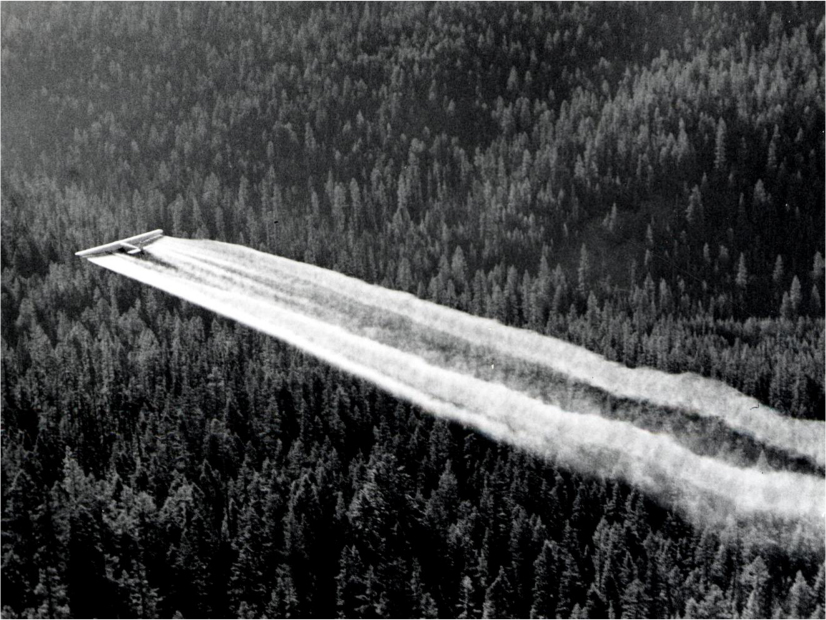 A plane flies low over the forest and releases a thick foam.