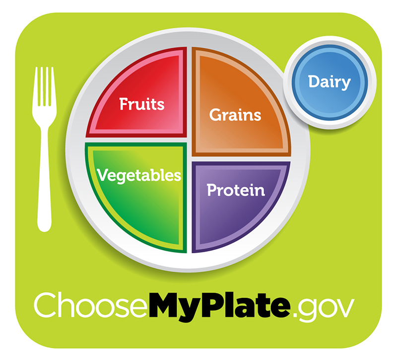 """Healthy diet logo shows a plate divided into four sections, labeled """"fruits"""", """"vegetables"""" """"grains,"""" and """"protein"""". The vegetables section is slightly larger than the other three. A circle to the side of the plate is labeled """"dairy"""". Beneath the plate is the web address """"Choose My Plate dot gov""""."""
