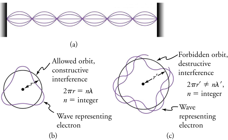 Part (a) shows standing waves on a string. With wave representing an electron parts (b) and (c) show allowed orbit (constructive interference) and forbidden orbit (destructive interference) respectively. The figure also shows equations—constructive interference occurs when 2πr=nλ where r is orbit radius and n is an integer and destructive interference occurs when 2πr'≠nλ' where r' is orbit radius and n is an integer.