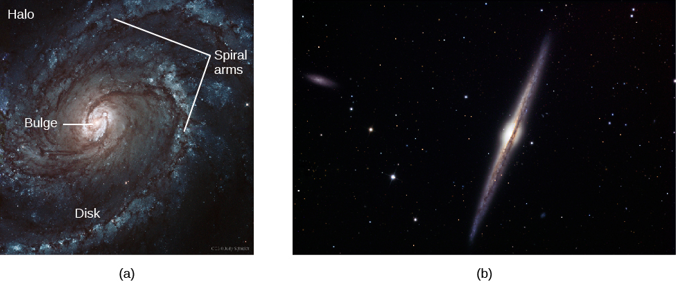 "Two Views of Spiral Galaxies. In panel (a), at left, the face-on spiral M100 is shown with the major components labeled. At center is the ""Bulge"", the ""Spiral arms"" are indicated with arrows at top and to the right, the spiral arms lie within the ""Disk"" and the ""Halo"" surrounds most of the galaxy as a whole. Panel (b), at right, shows spiral galaxy NGC4565 that is edge-on. It appears as a thin sliver of light, with a dark dust lane bisecting the entire length and a central bulge somewhat thicker than the thin disk."