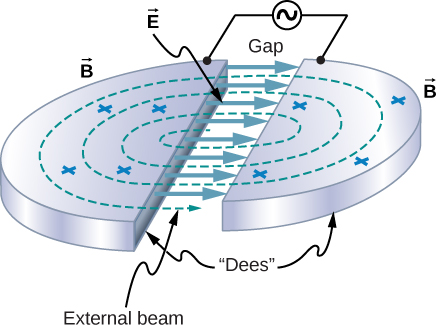 Figure shows two metallic semi circular plates separated by a gap. Each plate is connected to one terminal of an AC source. The plates  are labeled Dees. Circular dotted lines pass through both plates. These are labeled external beam. Arrows from one plate to another in the gap are labeled vector E. Crosses on the surface of the plates are labeled vector B.