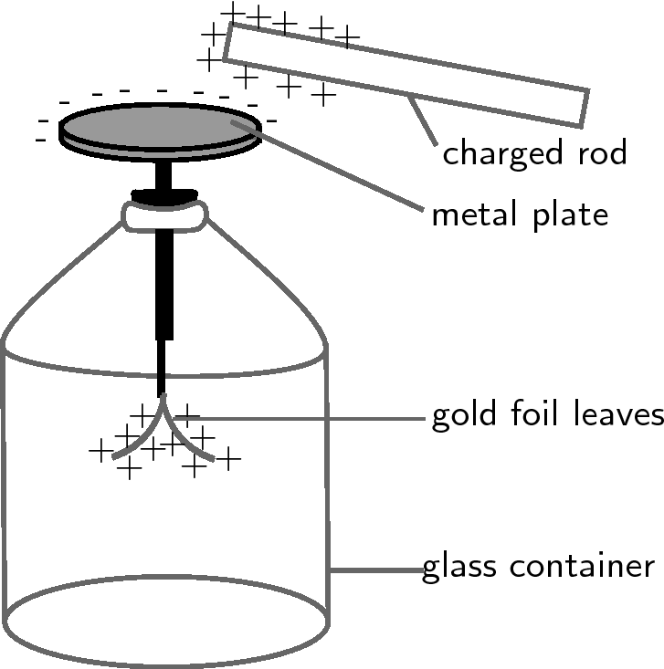 draw a neat diagram of electroscope meritnation  : electroscope diagram - findchart.co