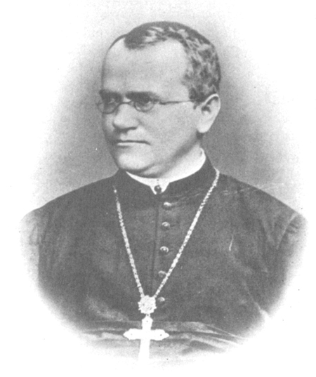Sketch of Gregor Mendel, a monk who wore reading glasses and a large cross.