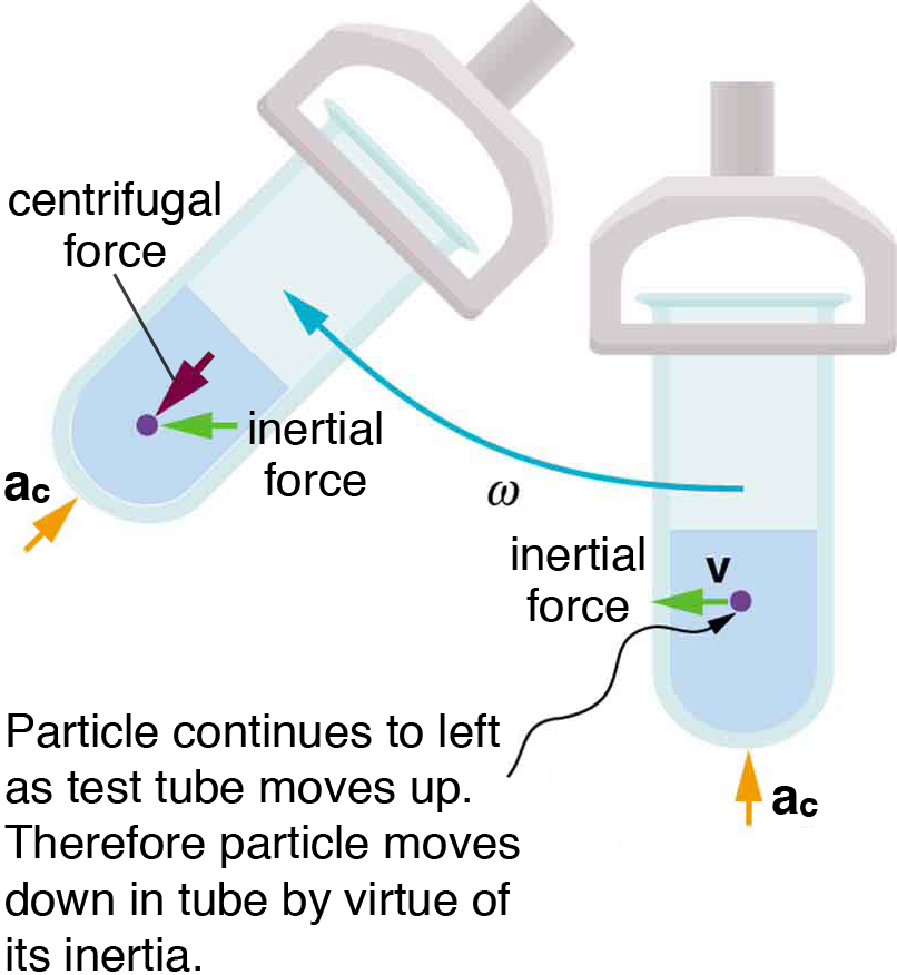 Fictitious Forces and Non-inertial Frames: The Coriolis Force ...
