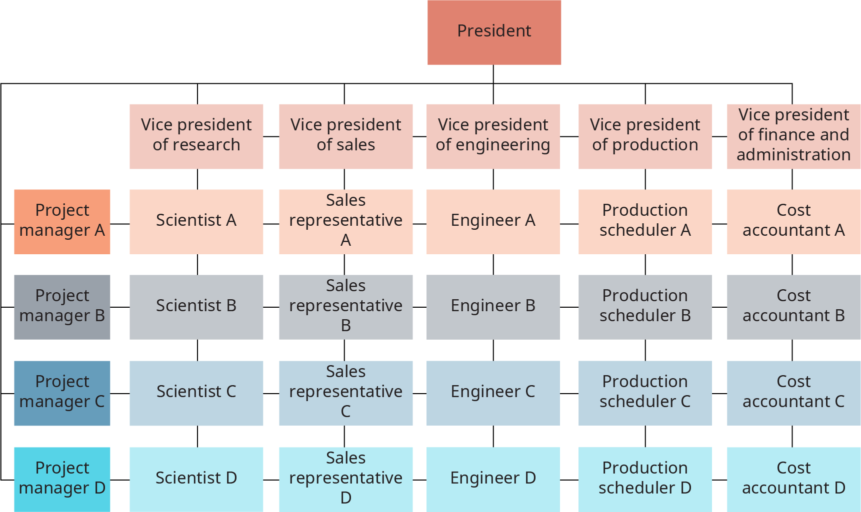 The matrix is made up of 5 columns and 4 rows. At the top of the matrix is the president; the president has lines extending to each column and row. The rows, from top to bottom, are labeled, Project manager A and Project manager B, and Project manager C, and Project manager D. From left to right, the columns are labeled Vice president of research and Vice president of sales, and Vice president of engineering, and Vice president of production, and Vice president of finance and administration. From left to right, the cells in the first row read, Scientist A, and Sales Representative A, and Engineer A, and Production Scheduler A, and Cost accountant A. Each row has this same construction, with scientist under v p of research; and sales rep under v p of sales, and engineer under v p of engineering, and production scheduler under v p of production, and cost accountant under v p of finance and admin.