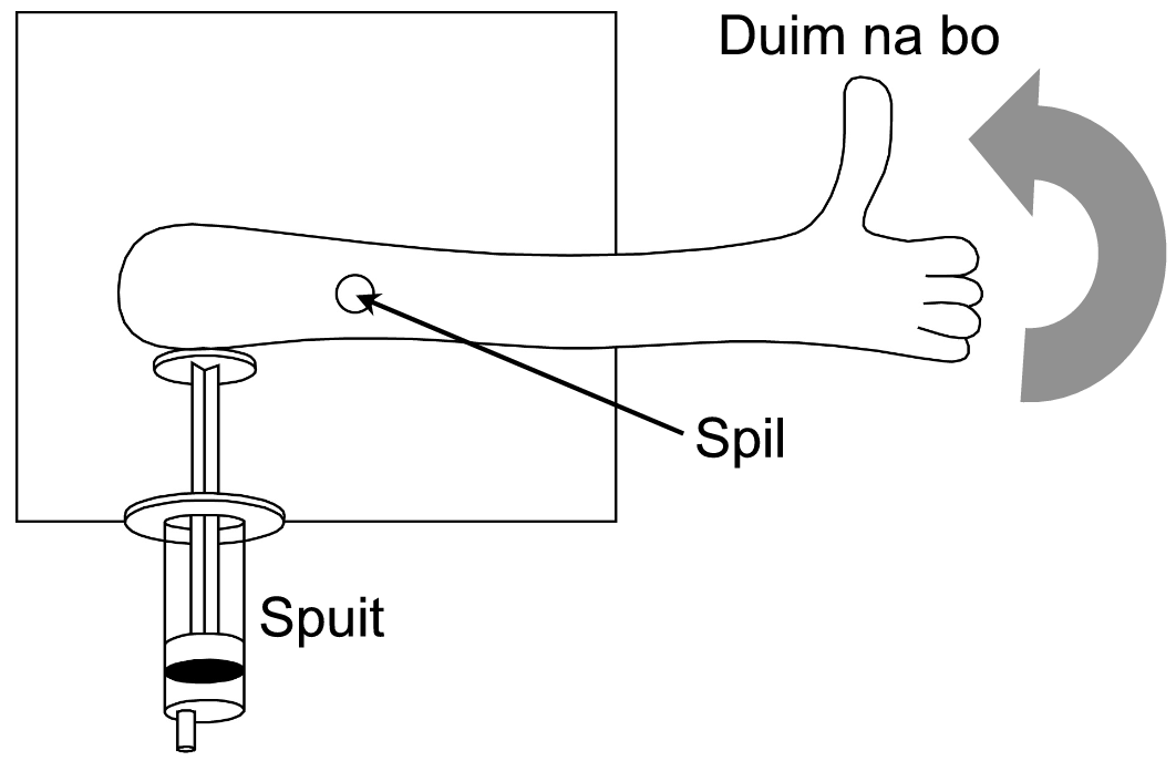 Figure 1 (Picture 1.png)