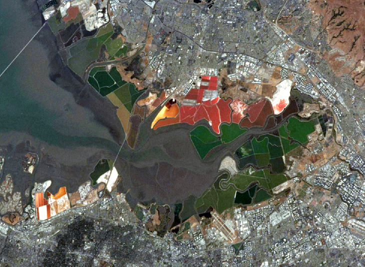 Salt Ponds. Bright red salt ponds (seen just above center) stand in stark contrast to the buildings and green vegetation at the south end of San Francisco Bay in this satellite photograph.
