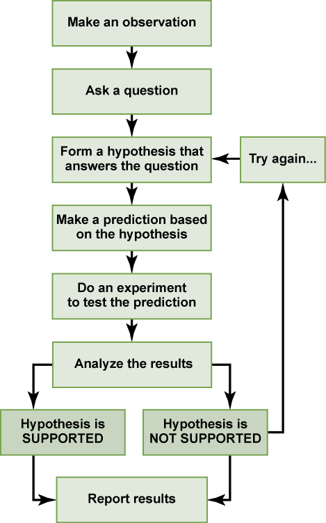scientific method development ap exam The beauty and joy of computing is an ap computer science principles  this  rigorous process of development and testing has yielded a course that not only.