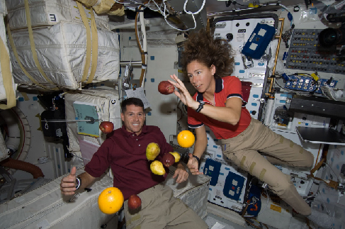 "Photograph of Astronauts Aboard the Space Shuttle Endeavour. Two astronauts are seen, along with apples, oranges and pears, ""floating"" inside the shuttle."