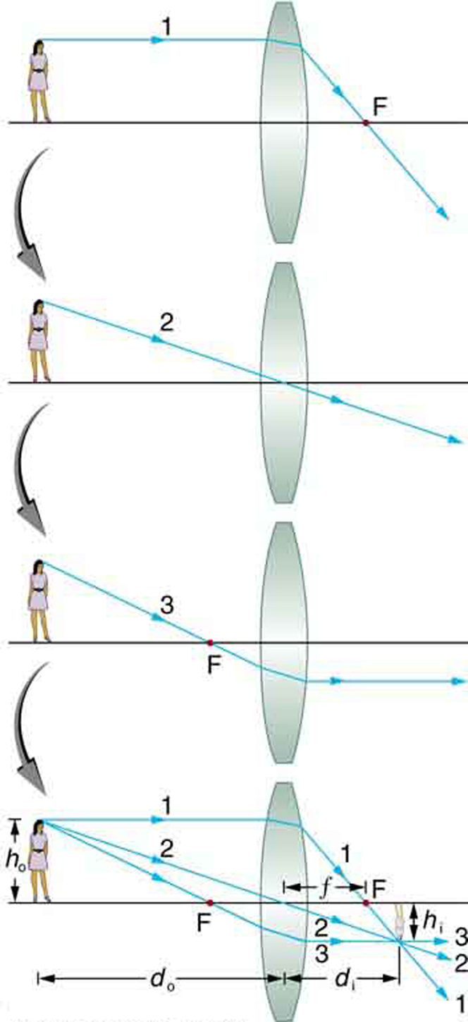 First of four images shows an incident ray 1 coming from an object (a girl ) placed on the axis. After refraction, the ray passes through F on other side of the lens. Second of four images shows an incident ray 2 passing through the center without any deviation. Third of four images shows an incident ray passing through F, which after refraction goes parallel to the axis. Fourth image shows a combination of all three rays, 1, 2, and 3, incident on a convex lens; after refraction, they converge or cross at a point below the axis at some distance from F. Here the height of the object h sub o is the height of the girl above the axis and h sub i is the height of the image below the axis. The distance from the center to point F is small f. The distance from the center to the girl is d sub o and that to the image is d sub i.