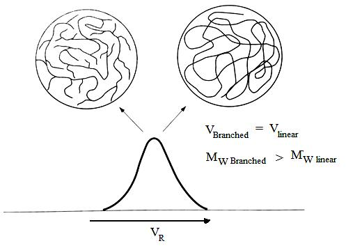 SEC elution of linear and branched samples of similar hydrodynamic volumes, but different molecular weights