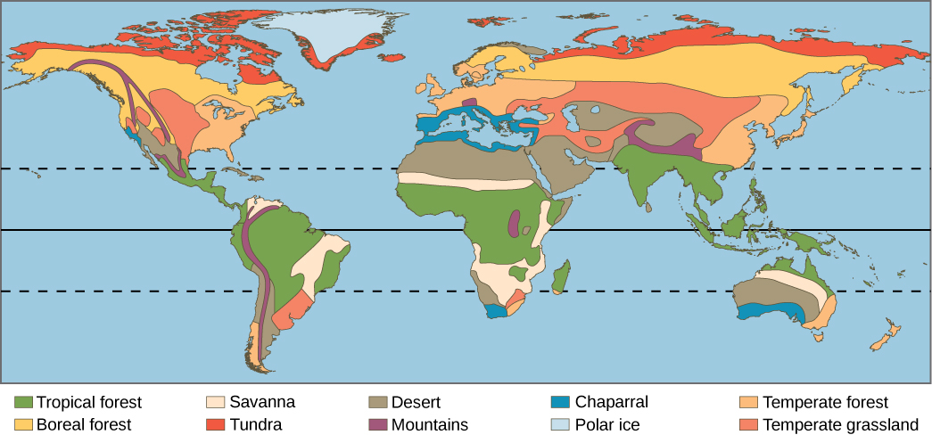33 terrestrial biomes environmental biology a world map shows the eight major biomes polar ice caps and mountains gumiabroncs