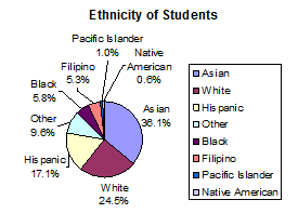 Pie chart showing ethnicity from largest to smallest.