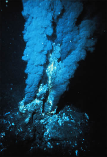photograph of a Black Smoker