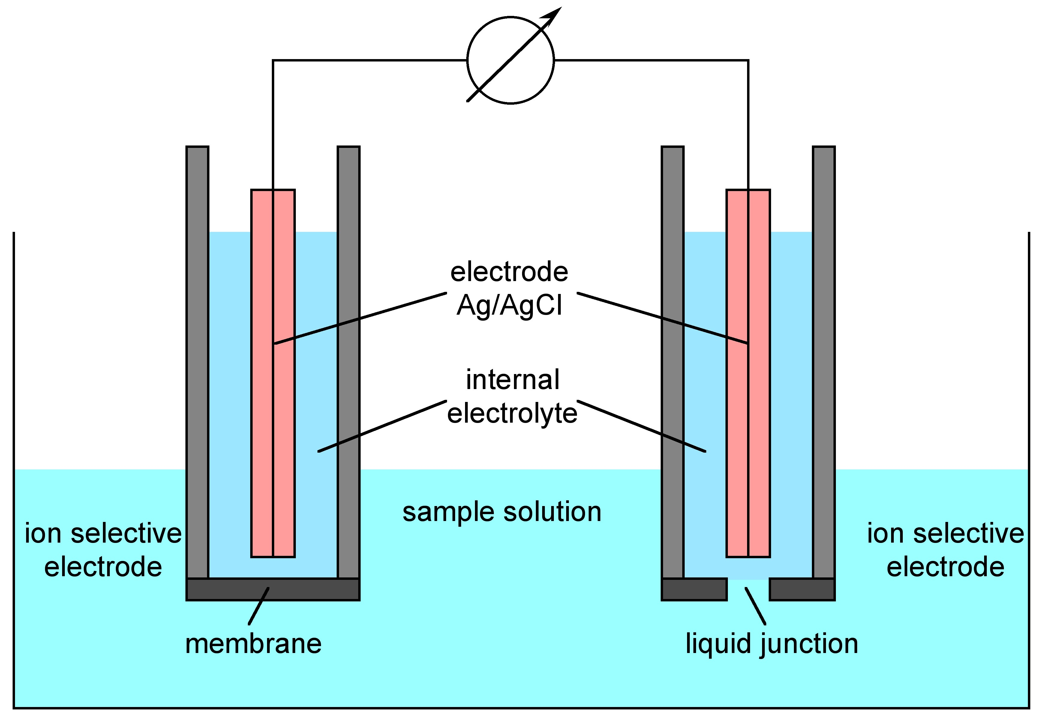 Ion Selective Electrode Analysis - Physical Methods in Chemistry and ...