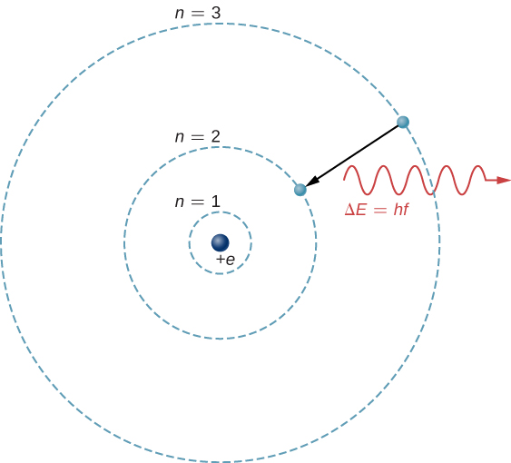 The hydrogen atom is represented as a proton in the nucleus, charge plus e, and an electron in a circular orbit around the nucleus. Three orbits, labeled n =1, n = 2, and n = 3 in order of increasing radius, are shown. An arrow indicates an electron transitioning from the outer to the middle orbit, and a wave labeled delta E equals h f is shown near the transition, leaving the atom.