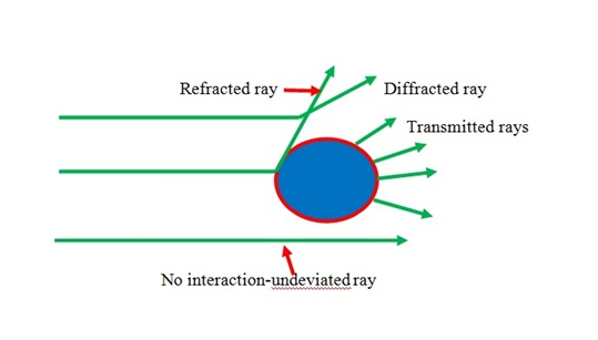 Modes of scattering of light in solution.