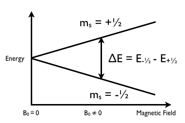 Figure 5 (graphics5.png)
