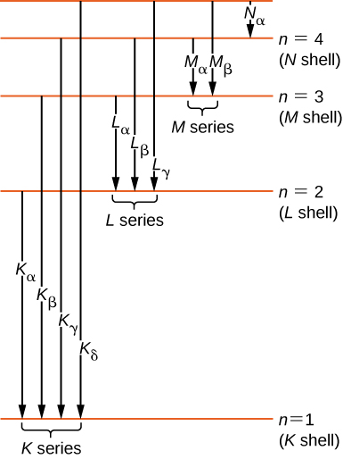 Different energy levels are shown in the form of horizontal lines. The line at the bottom is labeled as energy level n equal to one, or the K shell. Above this line, another horizontal line is labeled as energy level for n equal or the L shell. Similarly, other lines are shown for the M and N shells. As we move from bottom to the top, the distance between the lines decreases. The transitions are shown as arrows from one line down to a lower line and are labeled. Transitions from n=2, 3, 4, and 5 to the n=1 level form the K series and are, in order, the K sub alpha, K sub beta, K sub gamma, and K sub delta lines. Transitions from n= 3, 4, and 5 to the n=2 level form the L series and are, in order, the L sub alpha, L sub beta, and L sub gamma lines. Transitions from n= 4 and 5 to the n=3 level form the M series and are, in order, the M sub alpha and L sub beta lines. The transition fro n=5 to the n=4 level is also shown and labeled as N sub alpha.