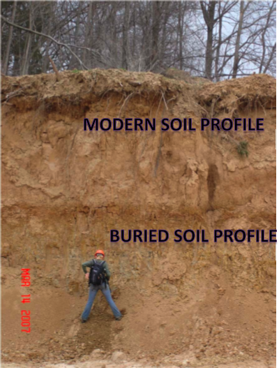 Openstax cnx soil and sustainability for Soil development definition