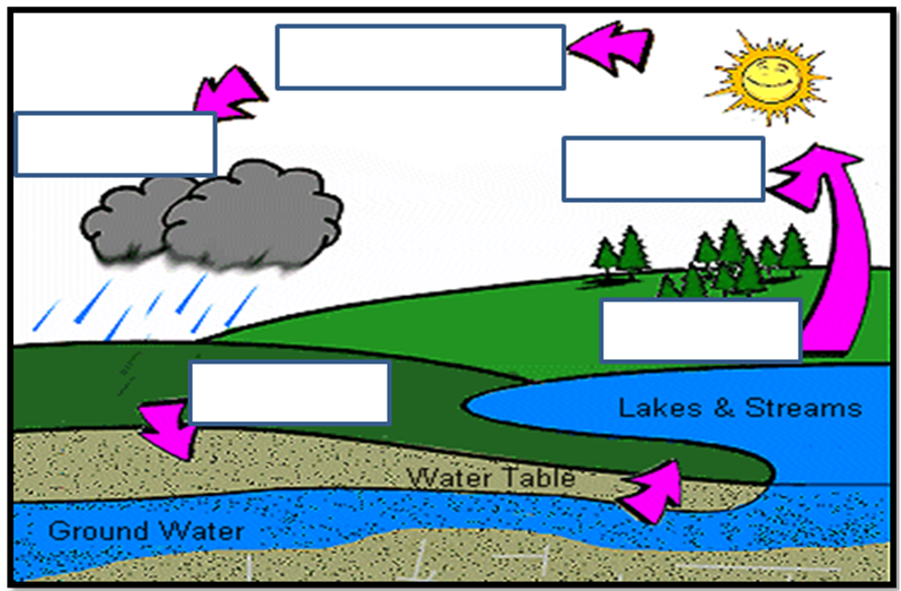 Water Cycle Diagram For Kids To Label Water cycle