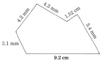 A polygon with sides of the following lengths: 9.2cm, 31mm, 4.2mm, 4.3mm, 1.52cm, and 5.4mm.