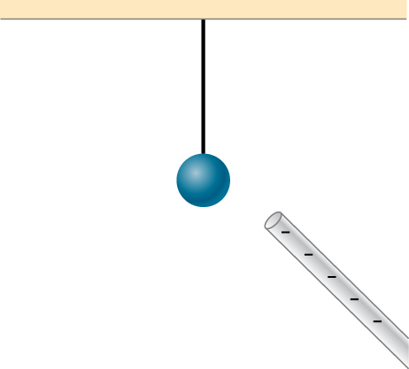 A sphere is shown suspended by a thread from the ceiling. A negatively charged rod is brought near the sphere.