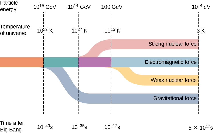 Figure shows a timeline. At 10 to the power minus 43 seconds after big bang, the line splits into two. One branch is gravitational force. The other moves ahead and further splits into two at 10 to the power minus 35 seconds. From here, one branch is strong nuclear force. The other splits into two at 10 to the power minus 12 seconds. The two branches are labeled electromagnetic force and weak nuclear force. The particle energy and the temperature of the universe at the time of the first split are: 10 to the power 19 GeV and 10 to the power 32 K respectively. At the second split, they are: 10 to the power 14 GeV and 10 to the power 27 K respectively. At the third split, they are 100 GeV and 10 to the power 15 K respectively. All four lines continue till they reach the values: 5 into 10 to the power 17 seconds, 10 to the power minus 4 eV and 3 K.