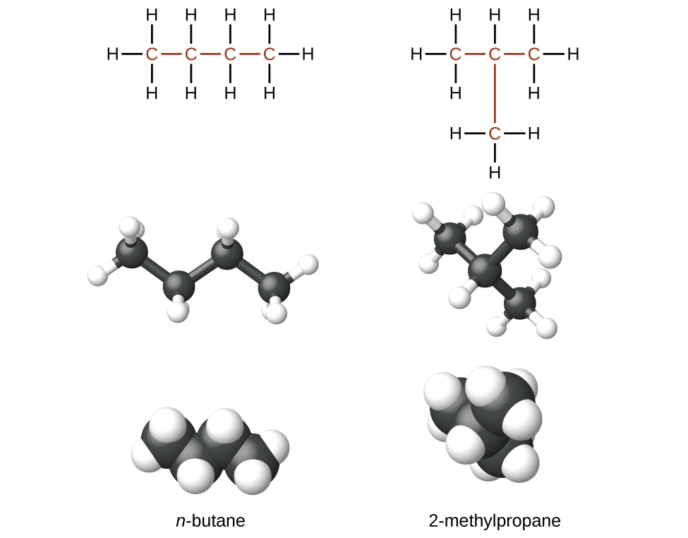 What are the isomers of butane?