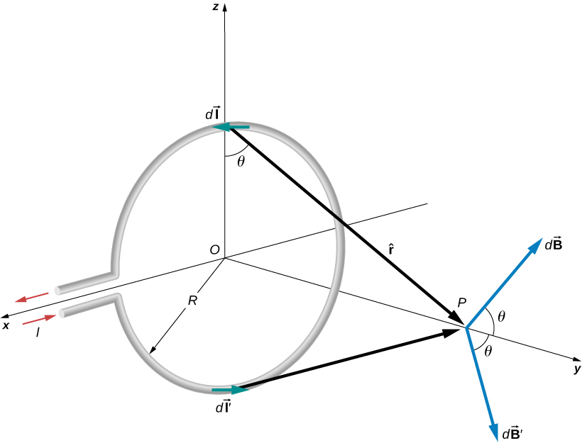 Figure shows a circular loop of radius R that carries a current I and lies in the xz-plane. Point P is located above the center of the loop. Theta is the angle formed by a vector from the loop to the point P and the plane of the loop. It is equivalent to the angle formed by the vector dB from the point P and the y axis.