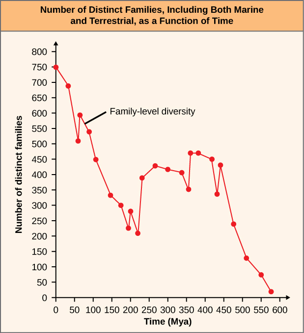 The graph estimates the number of distinct families, including both marine and terrestrial, as a function of time from zero to 600 million years ago.