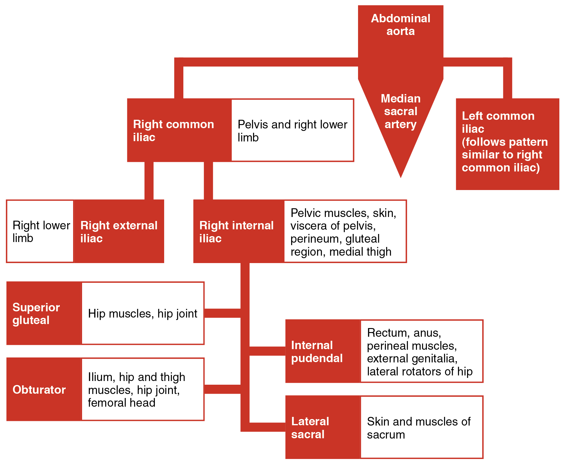 This flowchart shows the different branches into which that the ...