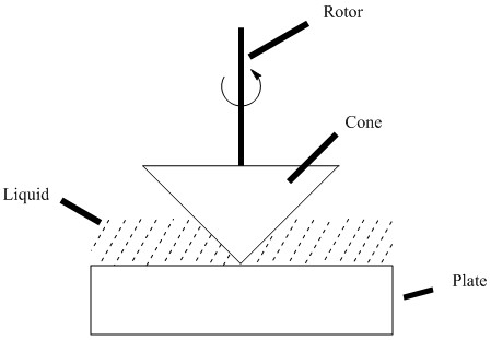 A cone is spun by a rotor in a liquid paste along a plate. The response of the rotation of the cone is measured, thereby determining viscosity.