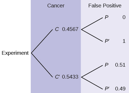 This is a tree diagram with two branches. The first branch, labeled Cancer, shows two lines: 0.4567 C and 0.5433 C'. The second branch is labeled False Positive. From C, there are two lines: 0 P and 1 P'. From C', there are two lines: 0.51 P and 0.49 P'.