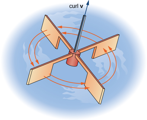 A diagram of a tiny paddlewheel in water. A segment is stretching up out of its center, and that has an arrow labeled curl v. Red arrows are drawn to show the rotation of the wheel in a counterclockwise direction.