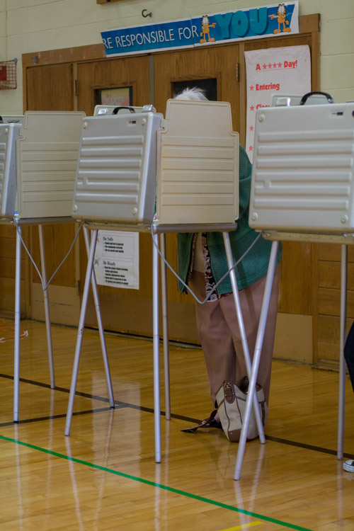 A woman is shown voting at a voting booth.