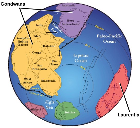 A world map shows two continents, Gondwana and Laurentia, which are shaped very differently from the continents of today. Gondwana was made up of two smaller subcontinents separated by a narrow sea. One continent contained modern Antarctica, and the other contained parts of Africa.