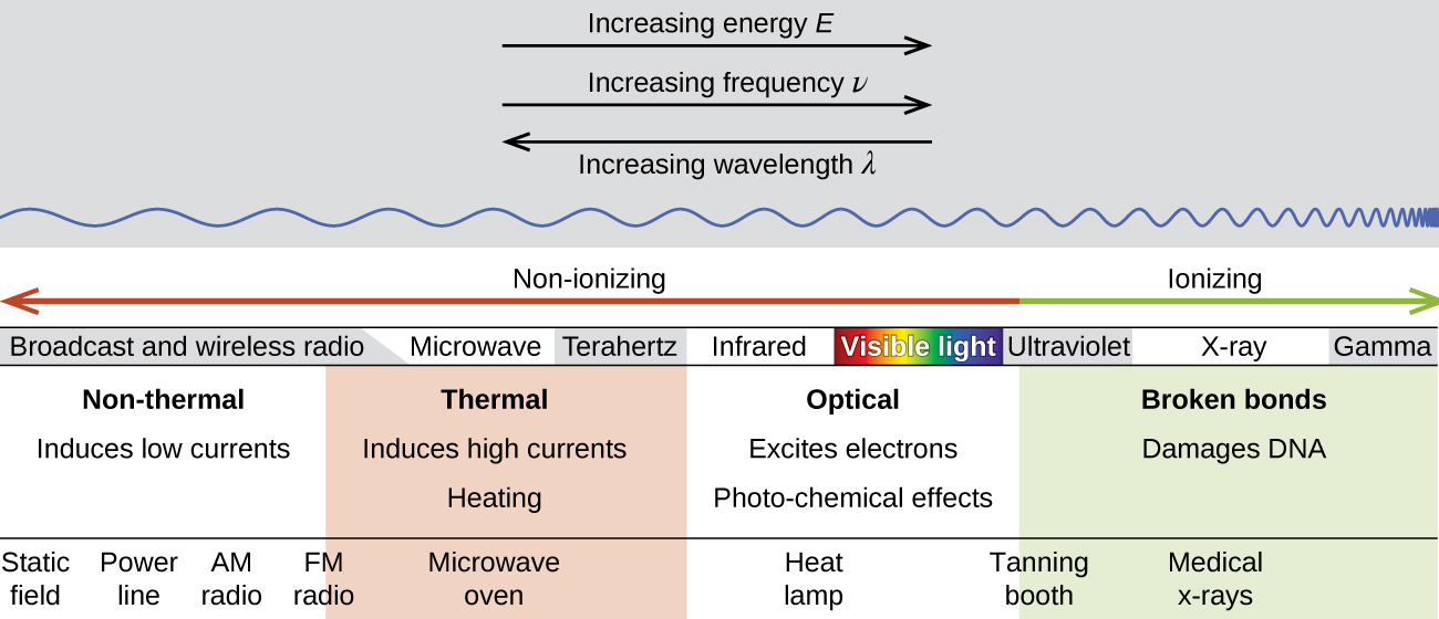 Biological Effects Of Radiation Chemistry Atoms First Openstax Cnx