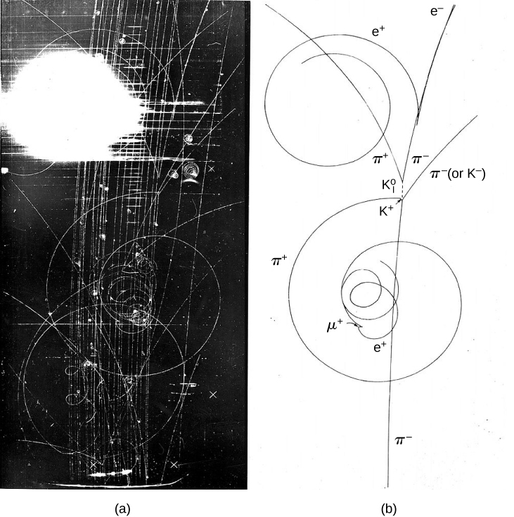 Figure a shows a photograph with a black background and a white pattern of swirls and lines on it. There is a bright white spot on the top left. Figure b shows the same pattern as a line drawing. It is labeled in various places with names of particles.