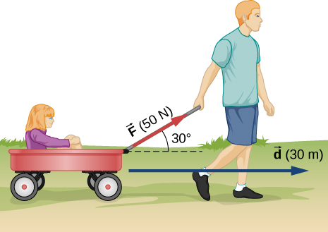 A person is pulling a wagon with a girl in it. The person is pulling with force vector F of 50 Newtons at an angle of 30 degrees to the horizontal. The displacement is a vector d of 30 meters.