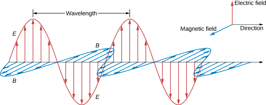 Figure shows the positive x direction as the direction of propagation. The positive y direction is labeled electric field and the positive z direction is labeled magnetic field. A sine wave in the xy plane is labeled E. The electric field arrows have their bases on the x axis and their tips on wave E. Another sine wave labeled B is in the xz plane. The magnetic field arrows have their bases on the x axis and their tips on wave B. Waves E and B have the same wavelength and are in phase with each other.